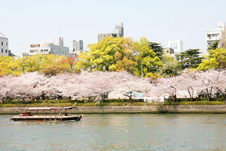 高倉第二コーポ桜